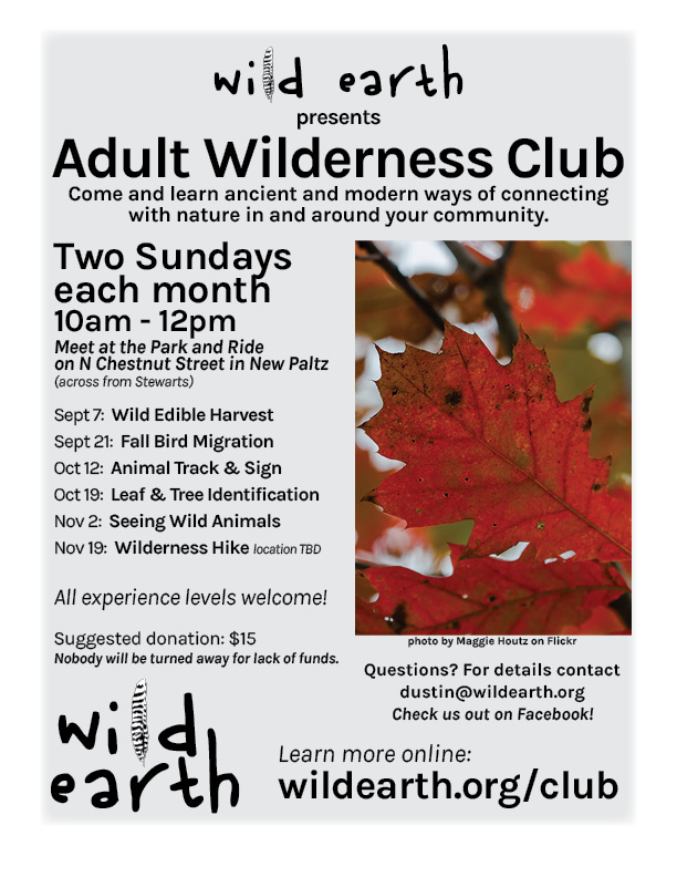 wilderness-club-fall
