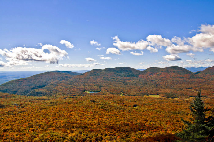 Balsam Lake Mountain Fire Tower Hike in the Catskills